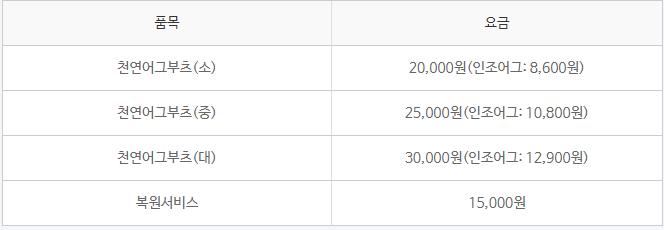 크린토피아 신발 가격