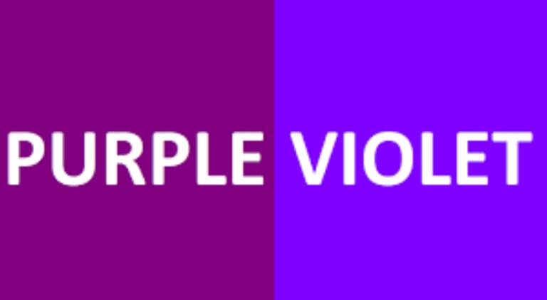 Purple (퍼플색) Violet(바이올렛 색)