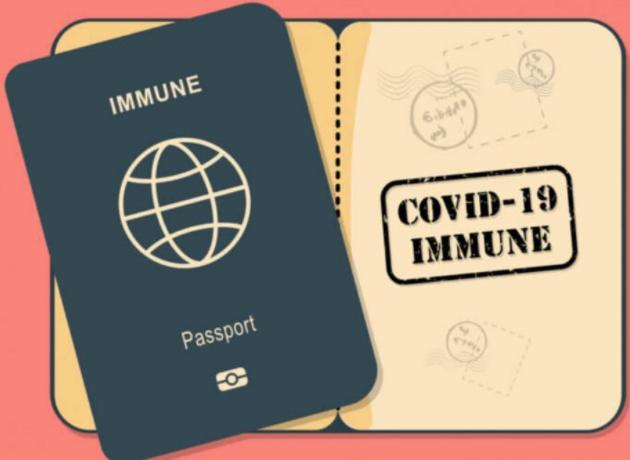 백신여권발급